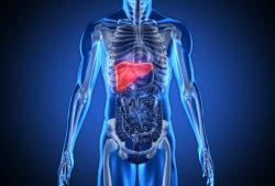 Teleasistencia a pacientes hepaticos (Fuente: CORDIS)